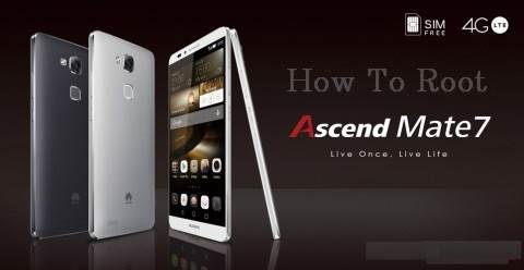 root ascend mate 7